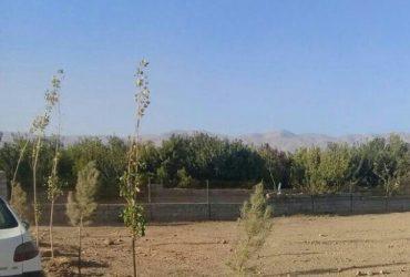 فروش زمین ۵۰۰ متری در کردان