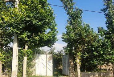 فروش ویلا لوکس ۱۰۰۰ متری در سهیلیه